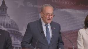 Schumer says 'weight of the moment' was felt during swearing-in for Trump impeachment trial