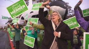 Green Party leader resigns suddenly