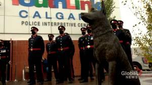 New police dog park in Calgary honours heroes (01:44)