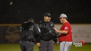 Lethbridge baseball community remembers well-respected umpire Mitch Ball (01:52)