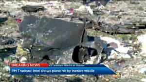 What role will Canada play in investigation into Iran plane crash?