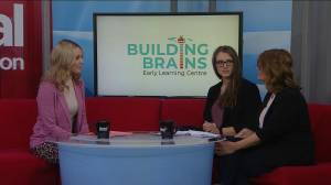 Building an education foundation with building brains