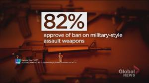 Ipsos poll shows majority of Canadians approve of new gun ban