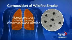 Harmful pollutants in wildfire smoke pose severe health risks (01:36)