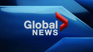 Global News at 5: January 16 Top Stories