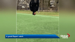 Eskimos receiver Shai Ross shows off gymnastic talents