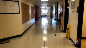 Anglophone school district school reporting spike in absentee rates (01:29)