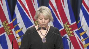 B.C. reports 559 new COVID-19 cases, one additional death (03:13)