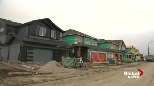 Edmonton home builders experience unexpected construction boom (01:45)