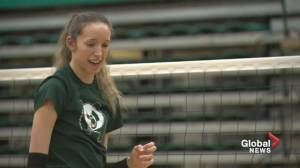 Alberta Pandas volleyball player making waves