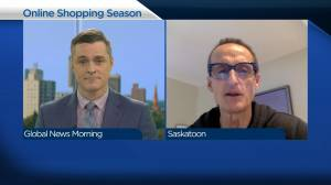 Online shopping sees six month boost, another expected for holidays (04:10)