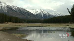 Alberta's Johnson Lake drained in effort to eliminate parasite