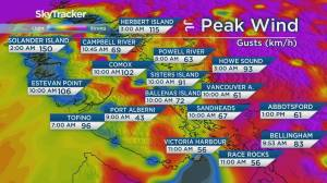 B.C. afternoon weather forecast: Nov 17 (03:31)