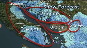 Four chances of snow in Metro Vancouver between now and the weekend (03:53)