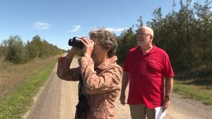 Environmental activists are against proposed beef processing plant in Prince Edward County