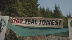 B.C. First Nation calls on anti-loggers to end Fairy Creek blockade (02:00)