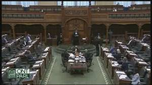 Ontario Liberal MPP attempts to introduce motion condemning Islamophobia (01:01)