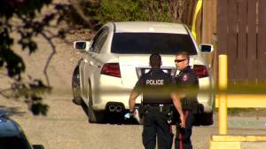 Calgary police continue investigation into deadly weekend shooting (02:34)