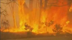 Australia's prime minister under scrutiny as bushfires spread