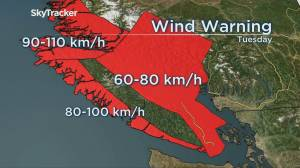Storm expected to hit B.C., bringing heavy rain and strong winds (03:24)