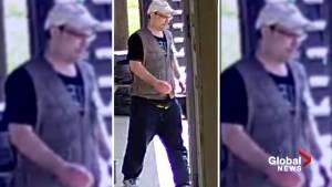 Edmonton police release sketch, video of suspect in Lisa Arsenault homicide (01:41)