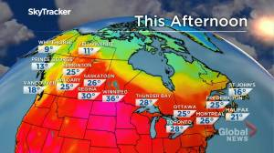 Winnipeg weather outlook: June 4 (01:59)