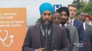 Federal Election 2019: 'Science is unclear' on vaping says Singh