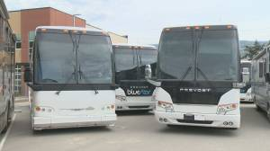 Charter bus companies feel left out of critical funding (02:16)
