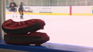 Regina Rebels dominate first half of SFMAAAHL season