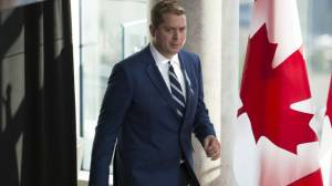 Conservative campaign: Scheer's dual citizenship, candidate's homophobic video, Doug Ford factor