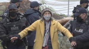Loggers turn tables on anti-logging protestors (02:12)