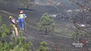 Crews battling fires along railway line near Pontypool in Kawartha Lakes (02:06)