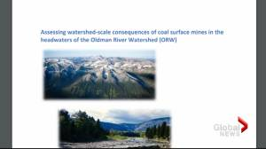 Study concludes coal mining in Alberta headwaters should not proceed (02:14)
