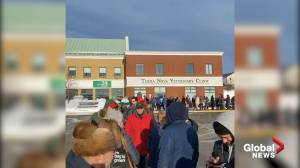 Long lines at Newfoundland grocery stores after record-breaking blizzard
