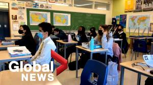 New Brunswick's current restrictions to stay until province hits 75 per cent vaccination target: Russell (01:26)