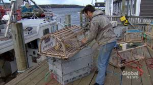 Woman calls for shutdown of lobster spring season