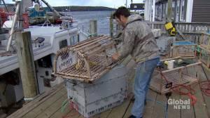 Woman calls for shutdown of lobster spring season