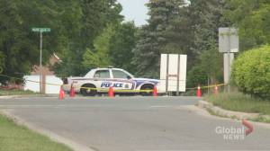 4 pedestrians dead after single-vehicle collision in London, Ont. (00:51)