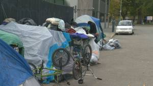 Kelowna's Gospel Mission director calls on city to take action as tent city grows, mayor says city doing all it can