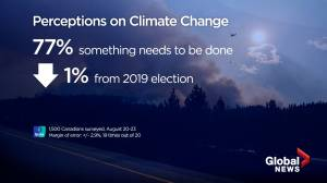 77% of Canadians think something needs to done on climate change: Ipsos poll (00:45)
