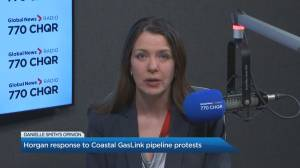 Danielle Smith joins the conversation on Global News Morning Calgary (03:02)