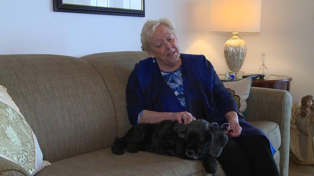 Labradoodle Creator Calls Dog Breed His Life Regret I