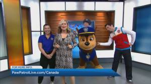 Paw Patrol Live: 'Race to the Rescue'