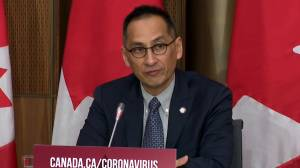 Coronavirus: Canadian health official expects COVID-19 vaccine in early 2021, says initial supply 'will be limited' (01:50)