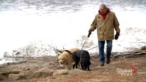 Protecting Hudson's Sandy Beach (02:05)