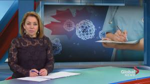 Global News Morning headlines: February 24, 2020