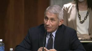 Coronavirus: U.S. is 'going in the wrong direction' as cases continue to rise, Fauci says