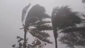 Tropical Storm Elsa approaching Florida after battering Caribbean (01:40)
