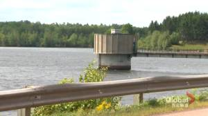 Moncton area urged to conserve water, mitigate high risk of blue-green algae bloom in reservoir