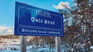 Community rallying to stop sale of Owl's Head park